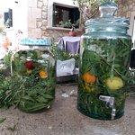 Preparant herbes mallorquines 6/2018