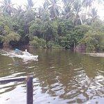 Bilde fra Tangalle Lagoon & Kayak