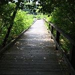 All Person's Trail