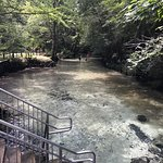 Ponce de Leon Springs State Park의 사진