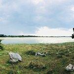 Panorama - lago con ranuncoli