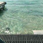 Playa Tortugas ภาพถ่าย
