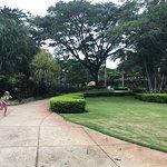Bilde fra Tamarindo Diria
