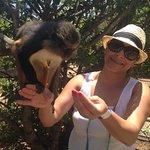 Monkey Town Primate Centre resmi