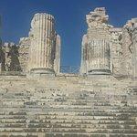 Foto de Temple of Apollo