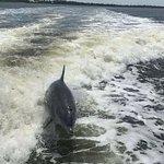 Captain Derek's Dolphin Adventure照片
