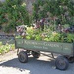 Audley End House Walled Organic Kitchen Garden