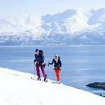 Skiing above a fjord on our annual, guided Norway trip.