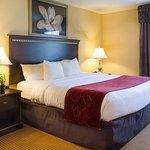 Comfort Suites Fredericksburg North