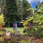 Foto de Volcano Garden Arts
