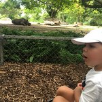 Photo of Zoo Miami
