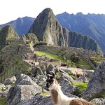 Foto de South Adventure Peru Tours
