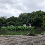 Foto Fuxing Park