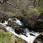 Afon Marteg walk
