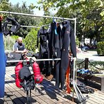 Marine Sport Dive Center Photo