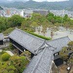 Kochi Castle afbeelding