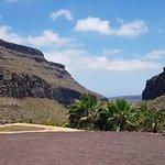 صورة فوتوغرافية لـ Palmitos Park