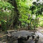 Foto de The Raintree Spa