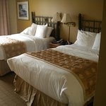 Clean Beds With Pillow Top Mattresses