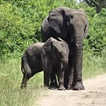 Bild från Africa Tours Adventure