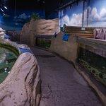 Bilde fra Sylt Aquarium