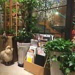 Thanks Nature Cafe照片