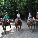Foto de Smoky Mountain Riding Stables