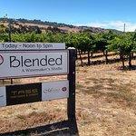 La Vie Dansante is one of three wineries at Blended, a Winemaker's Studio