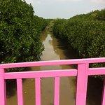 Jembatan Pink