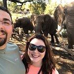 Foto de The Elephant Camp