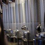Sugarland Cellars Winery resmi