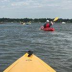 Beaufort Kayak Tours照片