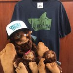 Bigfoot, Sasquatch