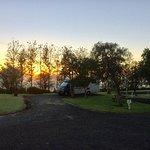 Our camping spot at Matakohe holiday park.