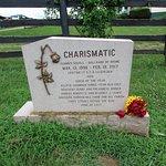 Charismatic's grave