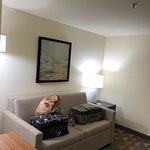 Bilde fra Holiday Inn Hotel & Suites - Asheville-Biltmore Vlg Area