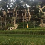 Bilde fra Four Seasons Resort Bali at Sayan