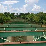 Disused bridge