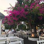Bilde fra Casa Nova Restaurant
