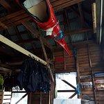 Kayak office on Notanauste