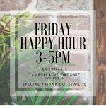 Friday Arvo Happy Hours, Every Week!