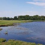Bilde fra Carlskrona Golfbana