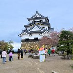 Photo of Hikone Castle