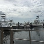 Foto de Key Largo Fisheries Backyard