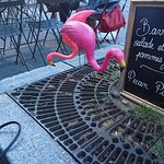 Bilde fra Cameleone Cafe Versailles
