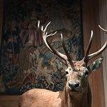 Foto de Musee de la Chasse et de la Nature
