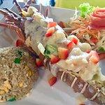 Lobster torpedo red