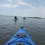 Aardvark's Florida Kayak Company의 사진