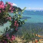 Фотография Messonghi Travel Center