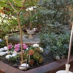 Ha anche un bel giardino per fare la colazione  !